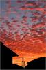 <center><i>Sunset, Chez Gonzales, </i></center>#1540-7DII