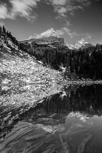 Teton Reflection, Black and White
