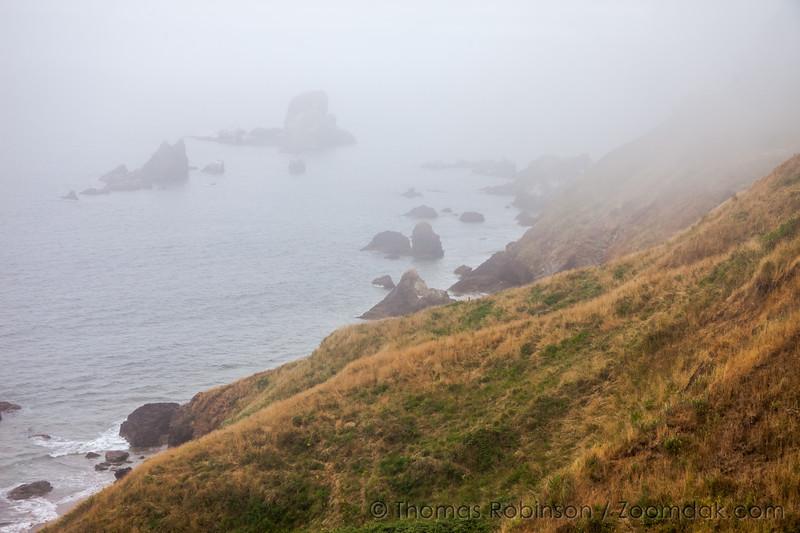 Sea Lion Rocks in the Mist