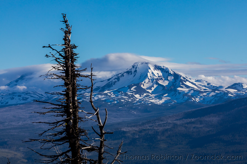 Sisters Mountains from Black Butte