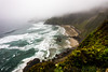 Heceta Head Foggy