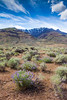 Steens Mountain Scenery