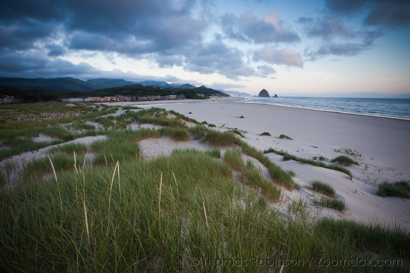 Cannon Beach Dune View