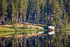 Yosemite Forest Lake