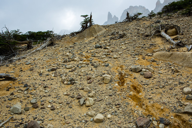 On the way up, we got lost again, this time in the cold Patagonian rain, on a steep hillside of treacherously soft sand.