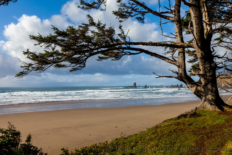 Sitka Framed Beach View