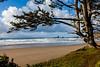 Sitka Framed Beach View