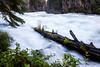 Edge of Rapids at Benham Falls