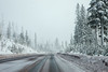 Santiam Pass in Snow