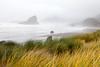 Gold Beach and the South Oregon Coast