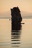 Osprey Tufa Perch
