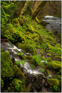 Double falls, water falls, Oregon, Fine art