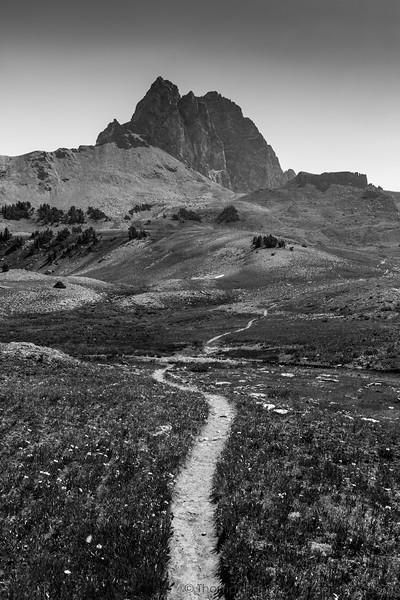 Trail to Buck Mountain