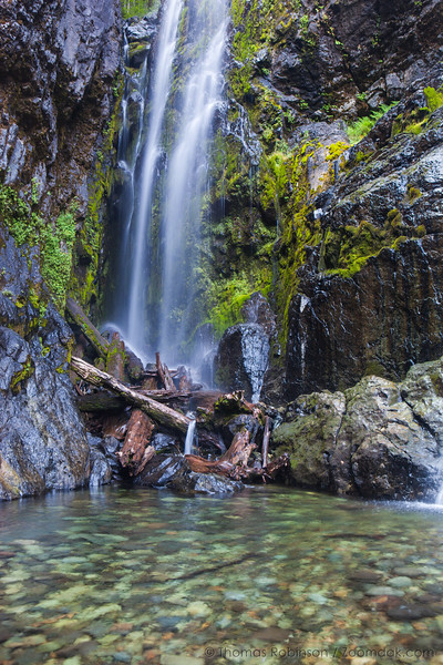 Henline Falls, Oregon - Vertical