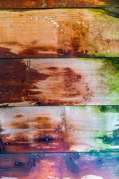 Wood Board Texture and Color