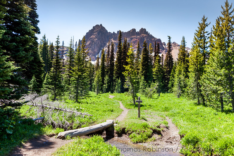 Trail to Three Fingered Jack