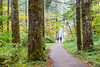 Autumn Trail Walk, Silver Falls State Park
