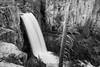 Tumalo Falls BW from Above