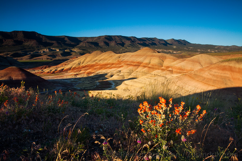 Golden Hour at the Painted Hills, Oregon