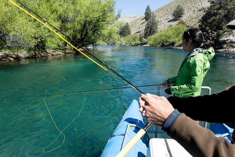 On our last morning, we decided we had to get back to the the Limay River.