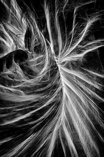 Rock Abstract, Coyote Buttes South