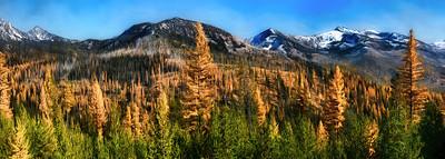 Blue Mountains Panorama