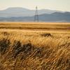 Grassy Iron County, Utah