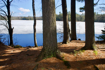 Perch Lake Chequamegon-Nicolet NF
