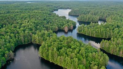 Northeast Lake CNNF