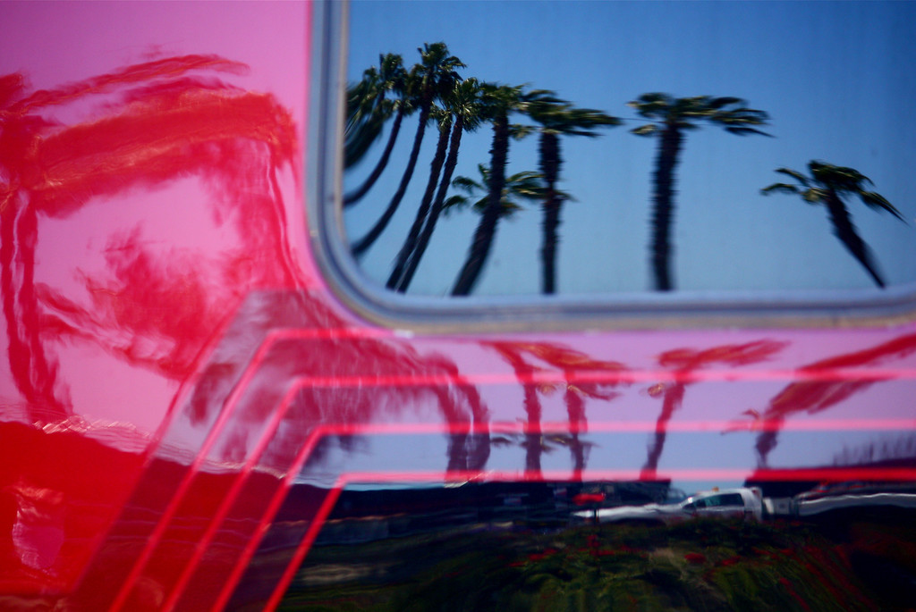 Reflection of Palms on Semi Truck Cab