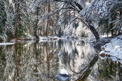 Winter Storm, Yosemite Valley