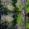 Tranquility on the Hillsborough River