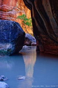 """Zion Reflections"", Springdale, Ut., 08/10/07."