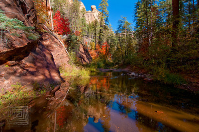 """Autumn Accents"", West Fork Park, Sedona, Az., 10/31/10"
