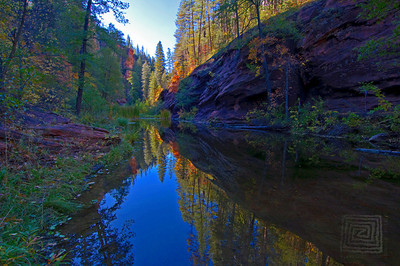 """Autumn Immersions"", West Fork Park, Sedona, Az., 10/31/10"