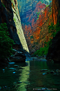 """Canyon Magic"", Zion Narrows, Springdale, Ut., Jul.'07."