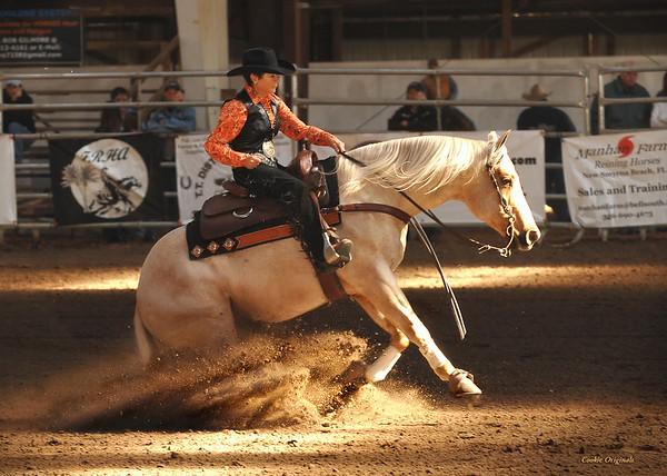 Reining Horse Show Sat