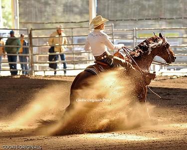 Reining Horse show SUNDAY NRHA