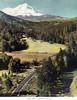 Relay California scenics-074