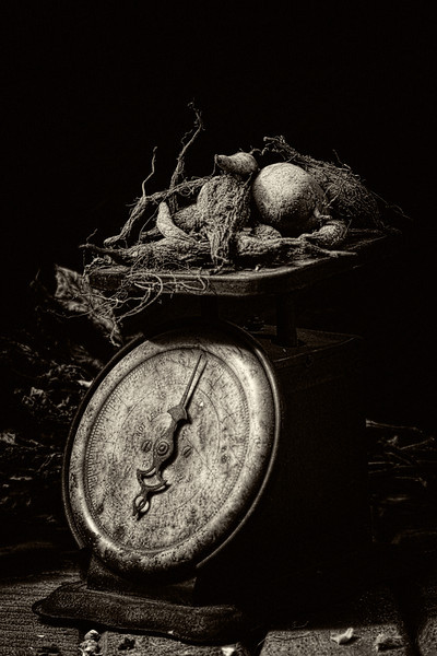 Barnyard Relic #4