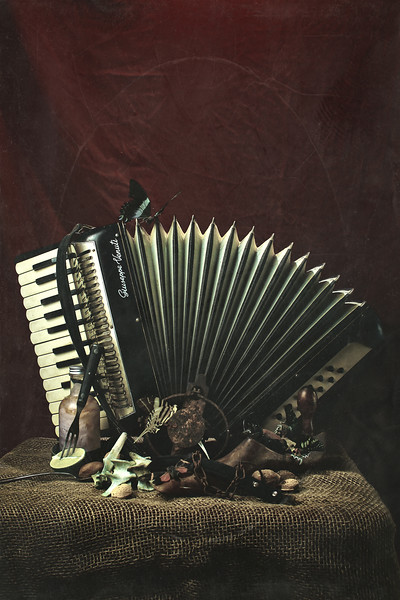 Accordion  #4