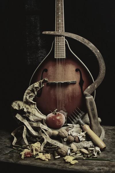 Mandolin  #2