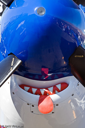 Smile! - Reno Air Races 2007, NV, USA