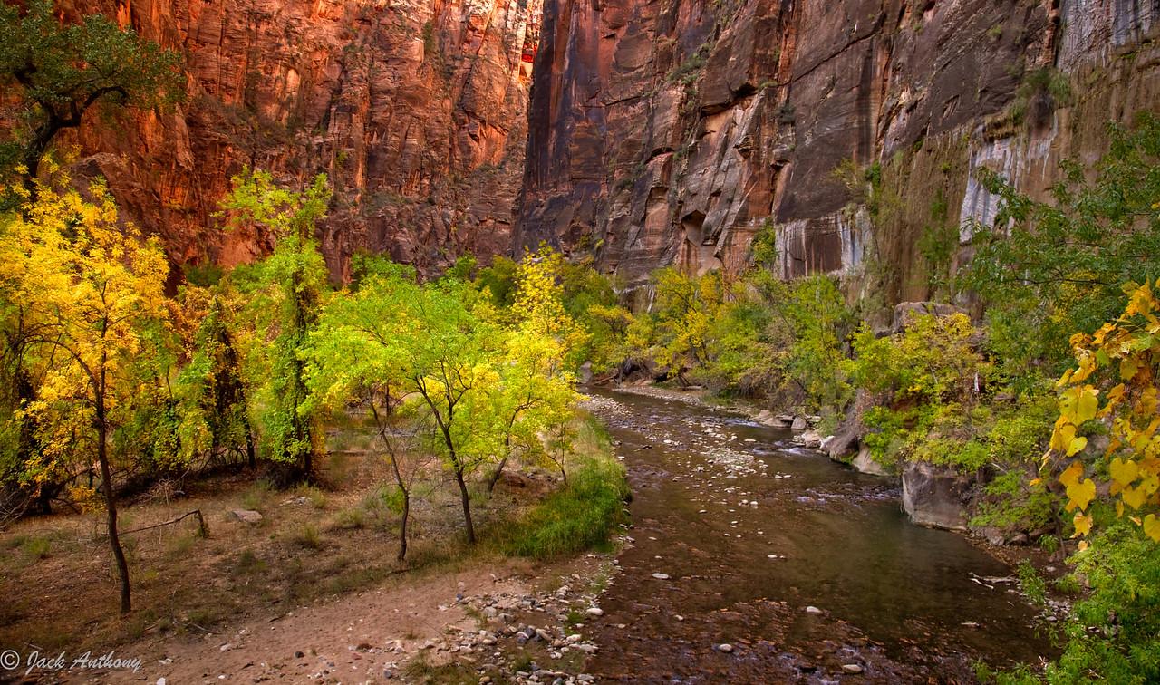 Virgin River, Zion National Park