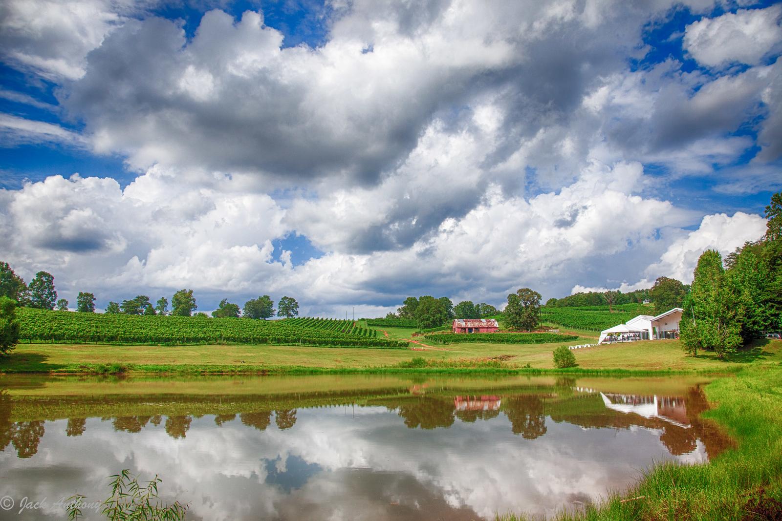 Three Sisters Vineyard, Lumpkin County, Ga.