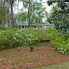 309 RR Spring 04-03-10