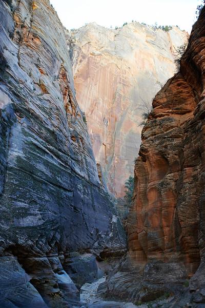 Echo Canyon - Zion National Park