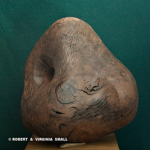 NAUTILUS  View #2 21h X 19w X 16d  black walnut $4500