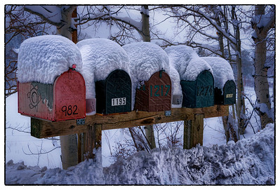 After the first snowfall of the season, rural mailboxes near Durango, Colorado are cloaked with a mantle of snow.