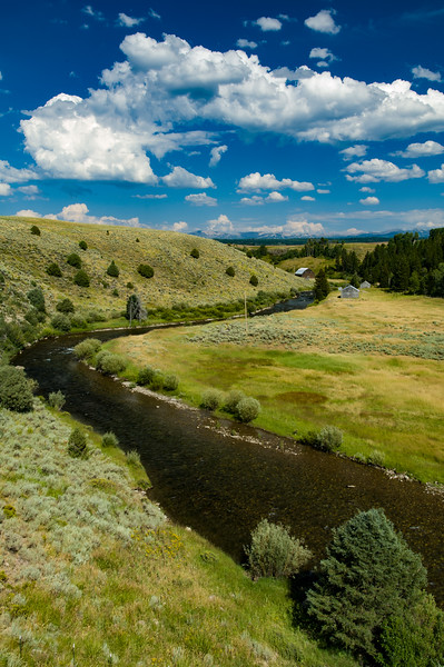 Bitch Creek, Teton Valley, Idaho